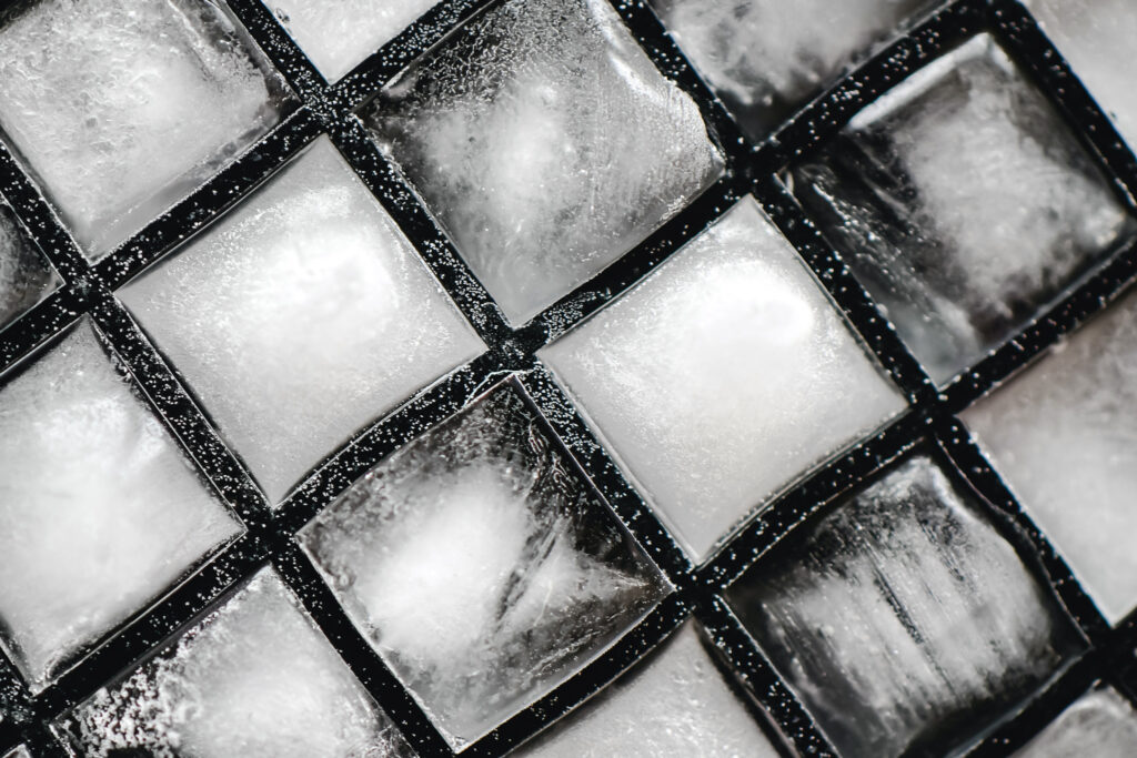store meat in ice cube trays